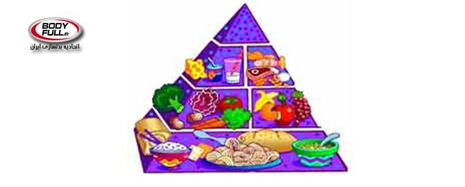 رژیم لاغری استیل من(The Stillman Diet)