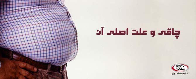 نوعی میکروب در روده انسان علت اصلی چاقی!