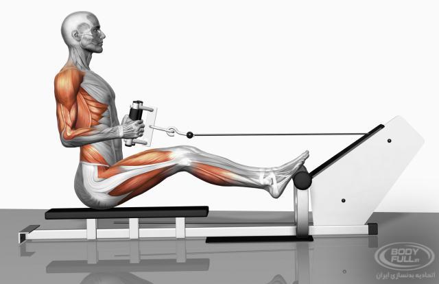 حركات زير بغل در تمرينات بدنسازي (با تصویر متحرک)