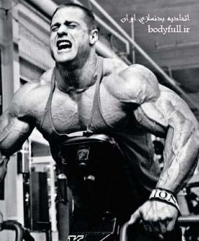 gym-workouts