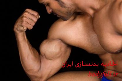 sculpting-a-masterpiece-biceps-712 copy
