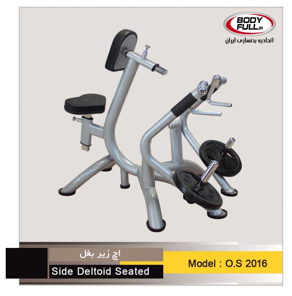 os2016Side Deltoid Seated