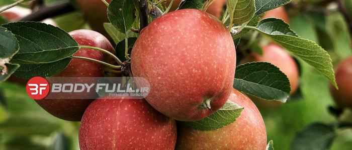 سیب و این همه خاصیت...