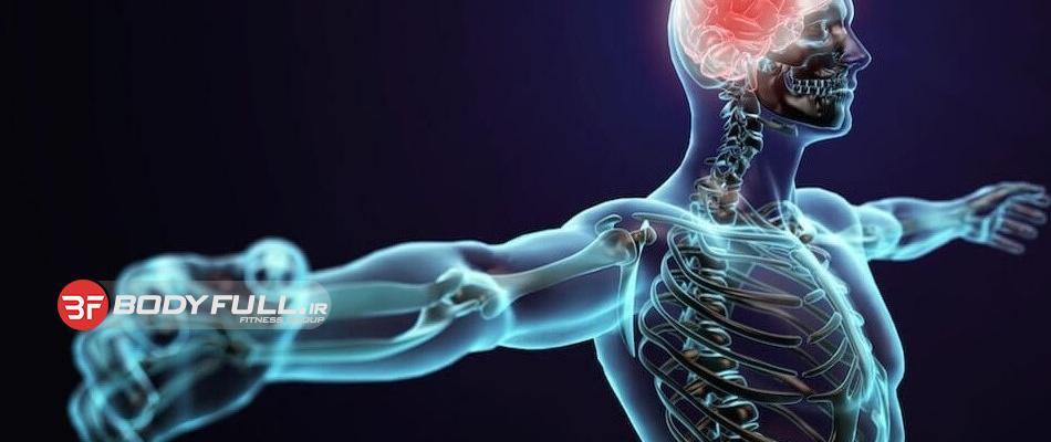 10 چيزي كه درباره بدن خودتان نميدانستيد