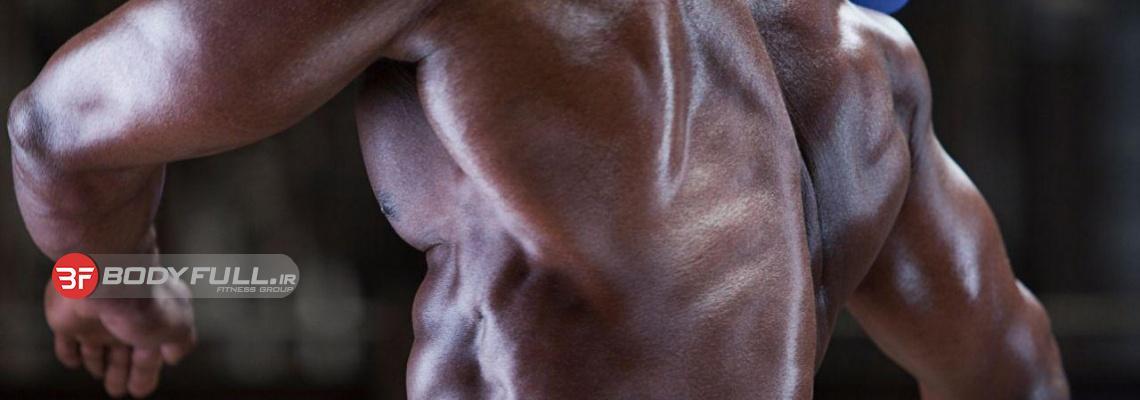 تمرین عضلات زیر بغل و پشت