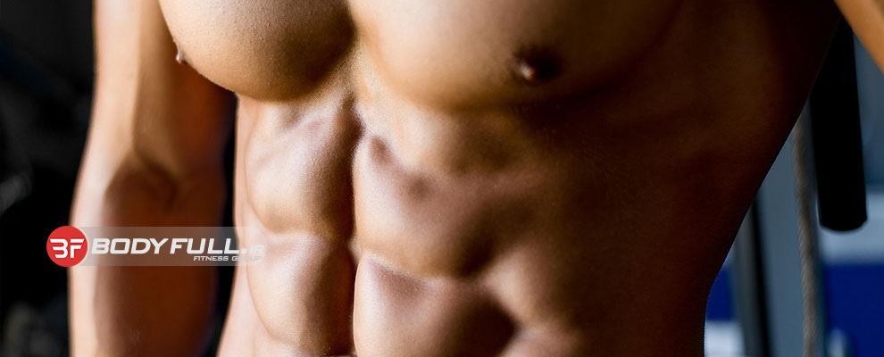 آشنایی با ساختمان عضلات شکم