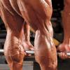 حرکاتی که برای عضلات پا و پایین تنه
