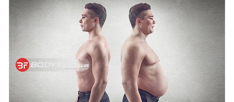 نظریه نقطه تنظیم در کاستن وزن