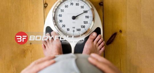چگونه چاق می شوند؟