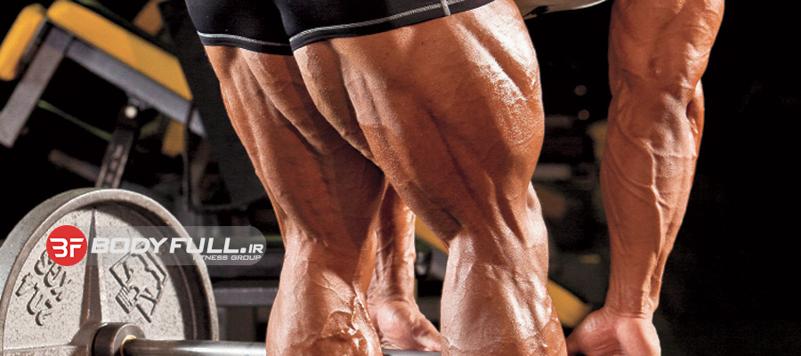 پرورش همسترینگ و عضلات سرینی