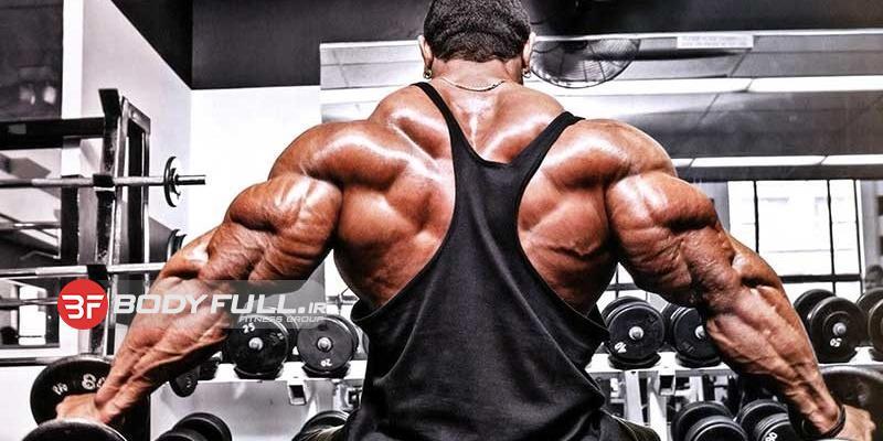 تمرینات اساسی برای عضلات پشت