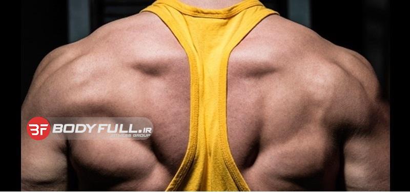 تمرین عضلات پشت بزرگتر با بیل ولیمور
