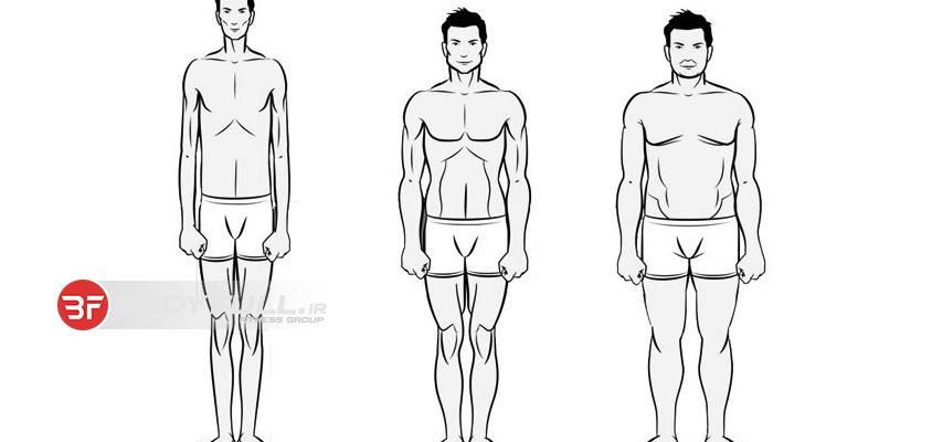 چگونگی تمرین و تغذیه انواع تیپ بدنی