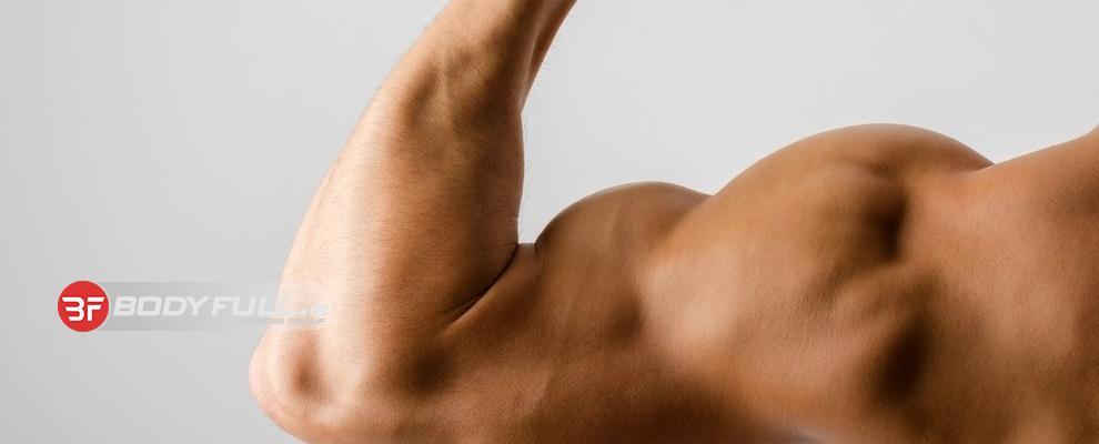 یک برنامه از بازوهای تازه نفس