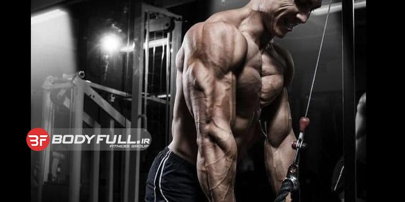 عضله کوچک عضله بی اهمیت نیست