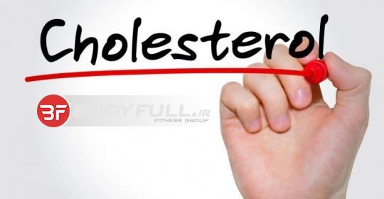 نقش کلسترول بر رشد عضلانی