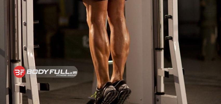 ساق بدون تقلب
