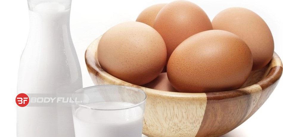 دومنبع پروتئینی بنیادی در رژیم غذایی