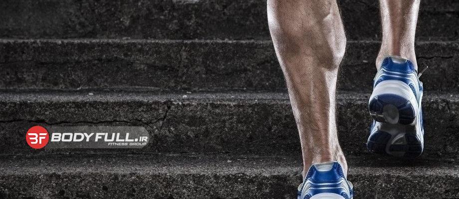 طراحی ساق با تمرینی تازه