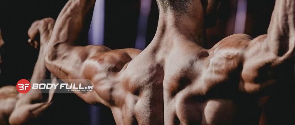 برگ برنده ی عضلات