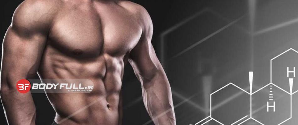 ۲۰ مورد از بهترین افزایش دهنده های تستوسترون