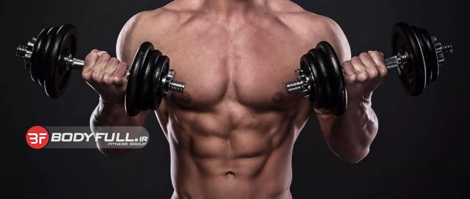 14 حقیقت اساسی در مورد عضله سازی