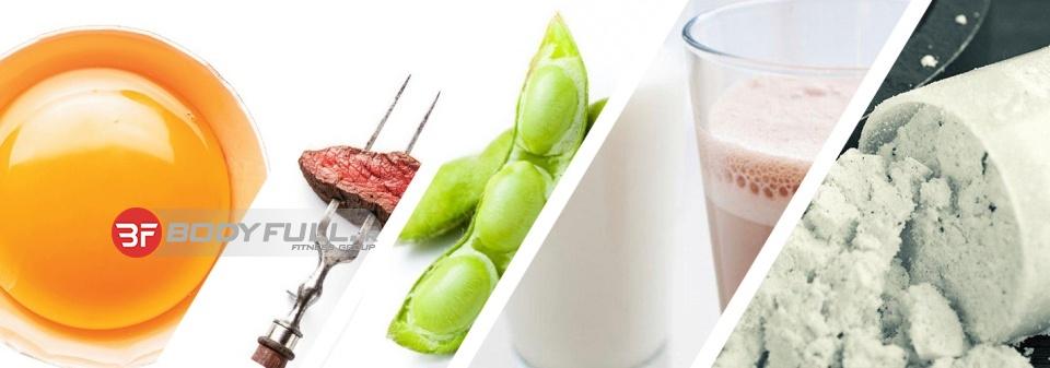 5 پروتئین عضله ساز