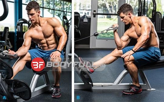 تمرینات بازو | قهرمان حرفه ای
