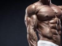 برنامه تمرینی برای تناسب عضله های بالا و پایین تنه