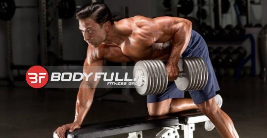 تقسیم عضلات در تمرینات بدنسازی چگونه است؟