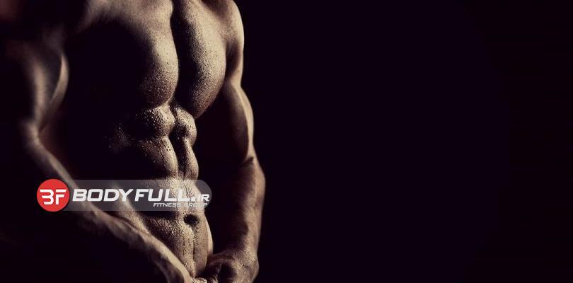 عضله ساز یا چربی سوز