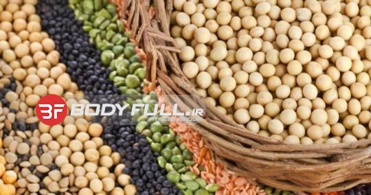 آگاهی از خواص مهمترین نتایج پروتئین گیاهی