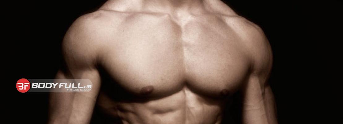 بخش خارجی سینه