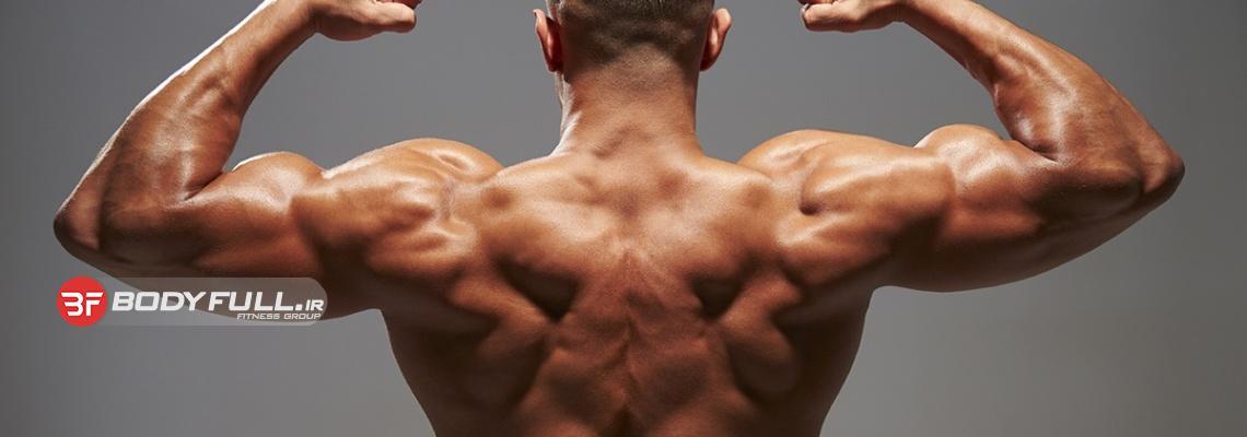 حمله ترکیبی به عضله های پشت