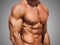 عضله سازی یا کاهش چربی بدون در نظر گرفتن فصل
