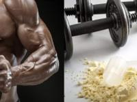 نقشه اورنیدین و آرژنین در رشد عضله