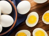 کل تخم مرغ بهتر از سفیده ی آن