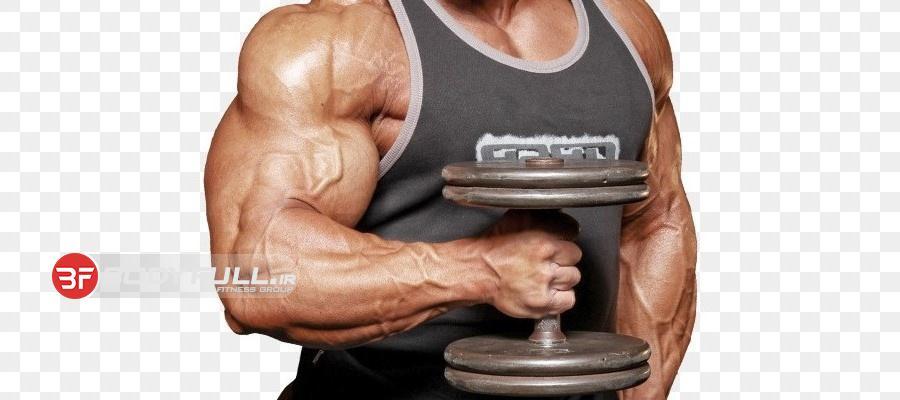 3 قانون اساسی برای عضله سازی
