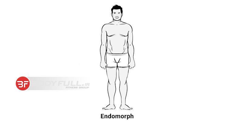 برنامه ریزی تیپ بدنی اندرومورف پیش از مسابقات