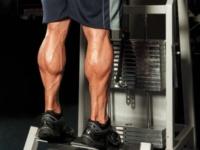 موقعیت پنجه های پا و تأثیر آن بر حرکات ساق