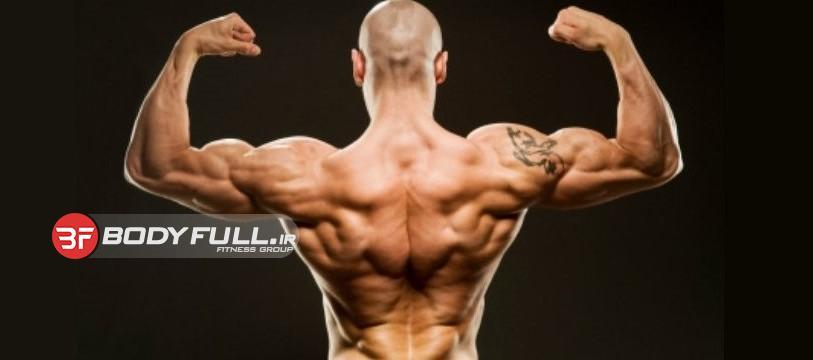 12قانون تمرینات عضلات زیر بغل و پشت