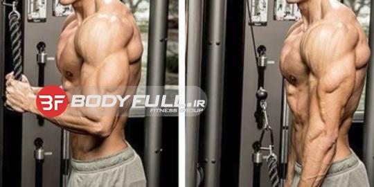 4 حرکت برای تقویت عضلات پشت بازو