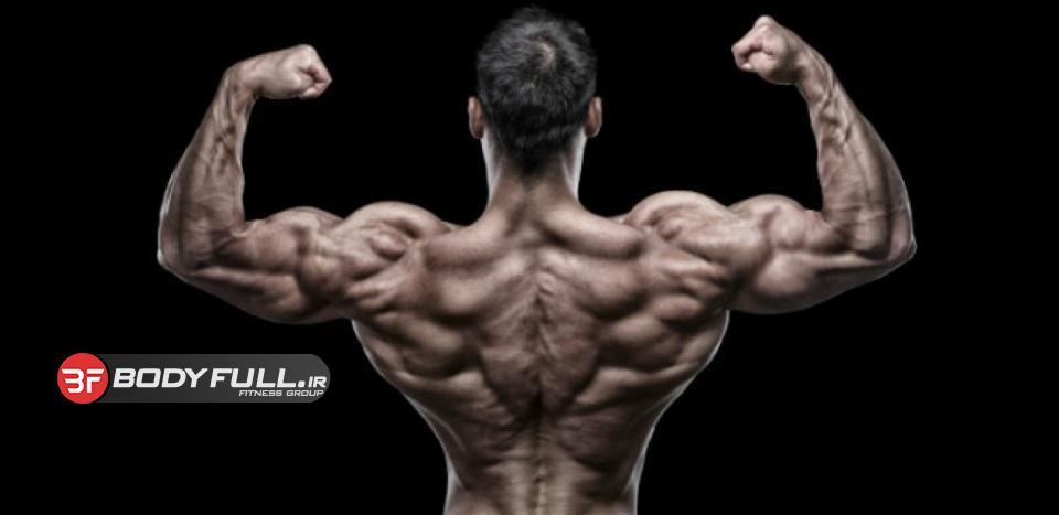 فتح عضلات پشت با سلاحی قدرتمند!